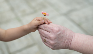 grandmother hands flower to young girl